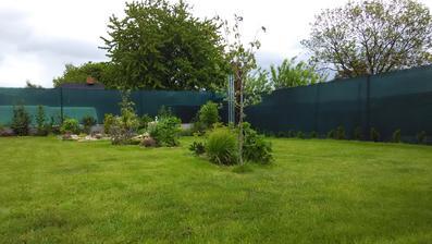 Loňský trávník je na tom o něco lépe, přežil vedra, zimu a letos doufám zarostou i ta občas holá místečka.