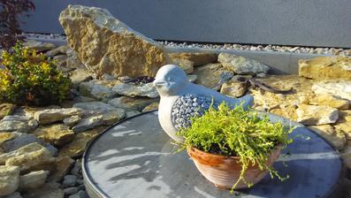 Víko od nádrže na vodu jsem trošku zamaskovala betonovým ptáčkem a rozchodníkem :)