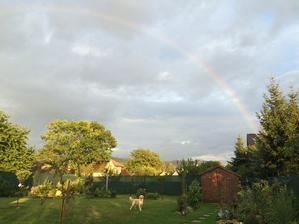 Než jsem stačila dojít pro mobil, byla téměř pryč... jinak na zahradě krásně za každého počasí :)