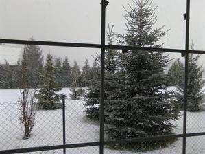 dnes krásne snežilo :-)
