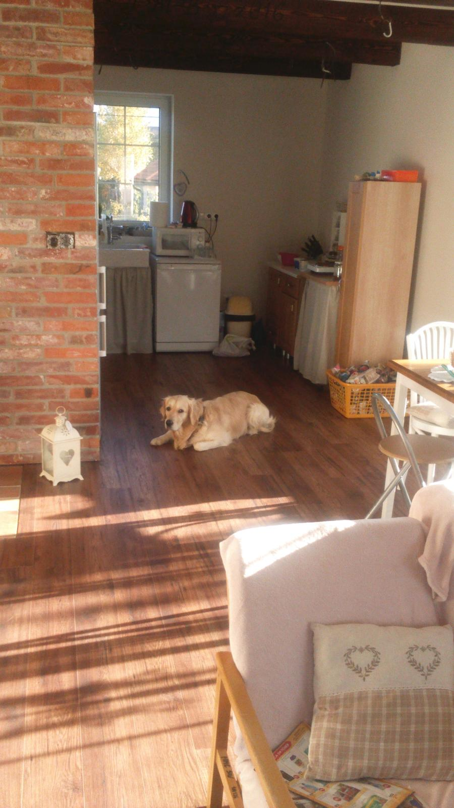 Náš nový domov-už bývame :-) - dnes nám ráno krásne svietilo slniečko