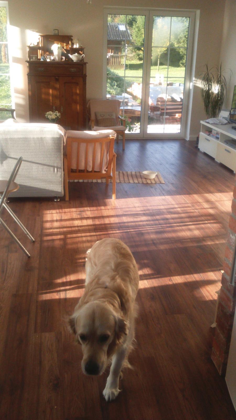 Náš nový domov-už bývame :-) - samozrejme Badko nechýba nikde
