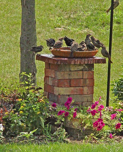Inšpirácia pre moju záhradu - Obrázok č. 20