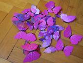 3D motýlci s malými magnety,