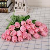 Tulipány rôzne farby - 25 ks,