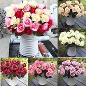 Ruža rôzne farby - 1 ks,