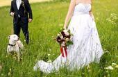 Antické (i těhotenské) svatební šaty s vlečkou, 38