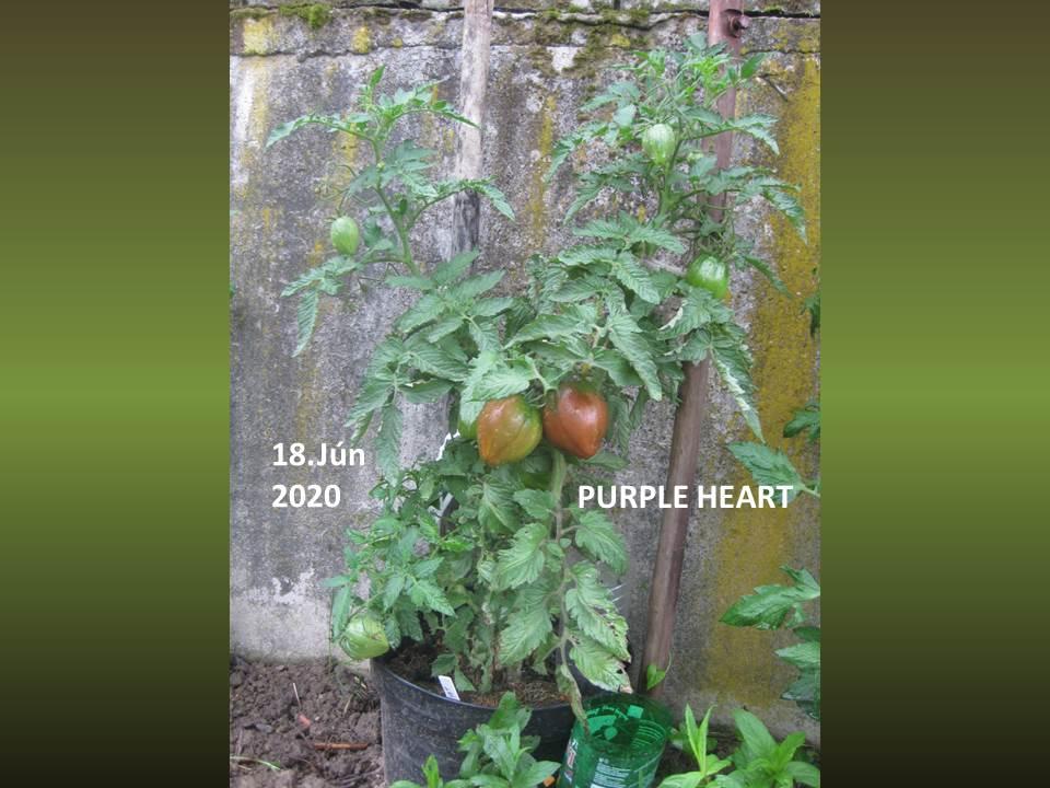 @matkoo72  Pri pestovaní... - Obrázok č. 1