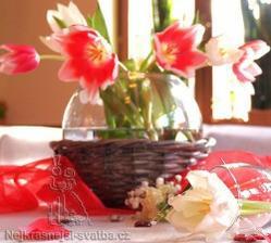miluji tulipány