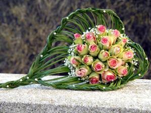 Nádherná barva růží
