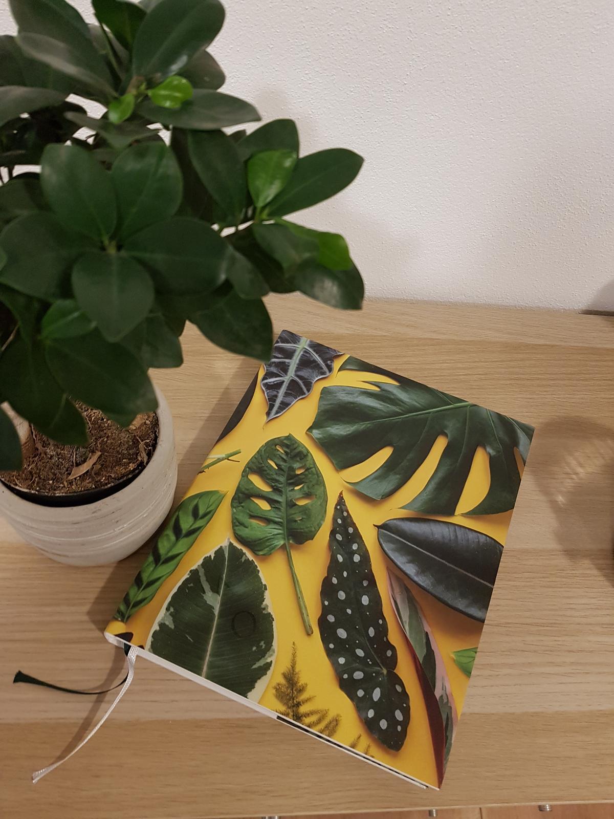 Moje krásne kvetinky - Kniha: Pokojovky a jak se o ne starat...velmi pekne spracovana