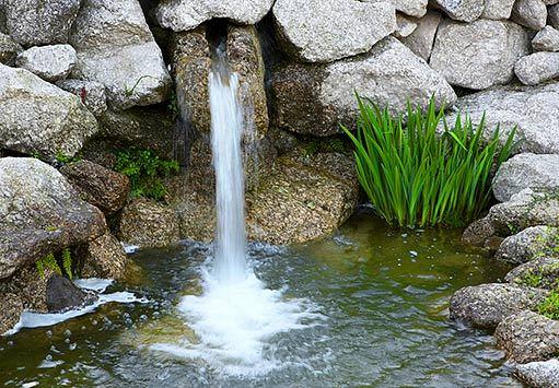 Voda v záhrade - Obrázok č. 8
