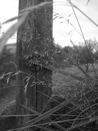 Domeček na venkově inspirace - moje foto