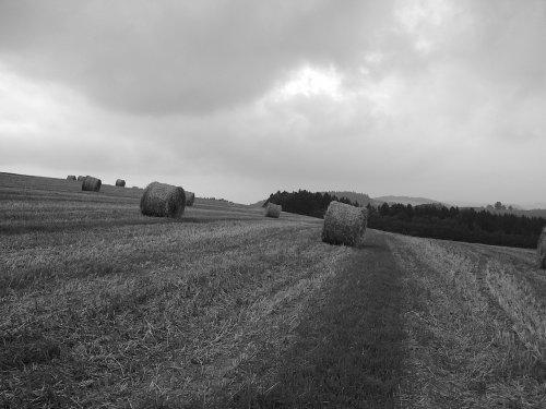 Domeček na venkově inspirace - fotky by my