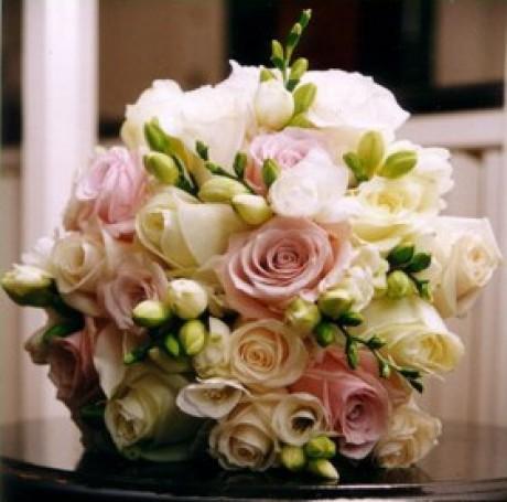 Ifoun - Taky hezká, ale fialové růže