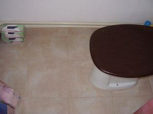 Dlažba na wc