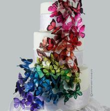 Překrásní motýlci, sháním přesně stejné ...