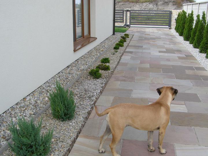 obklady a dlažby z prírodného kameňa (nie betonové a sadrové imitacie) - k tejto dlažbe nie su potrebné žiadné obrubníky (len pes:))