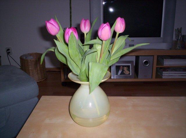 Ivanka a Filip - moje milované tulipániky:-))