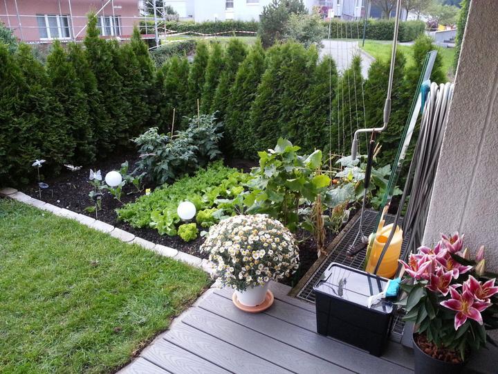 Premena terasy, rozmer 2 x 2,5 metra - Obrázok č. 2