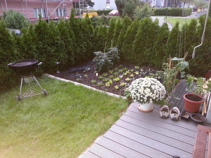 Premena terasy, rozmer 2 x 2,5 metra - Obrázok č. 1