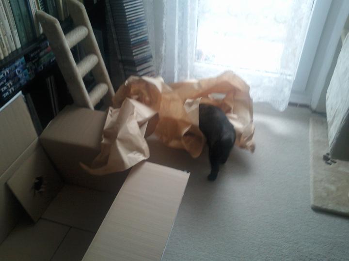 """Moja vysnívaná kuchyňa - dnes prišiel konečne môj """"balíček"""" :-D"""