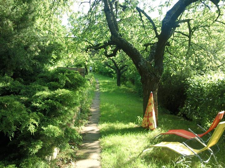 Príbeh našej záhrady/chatky, príp. čo sa mi páči - Obrázok č. 15