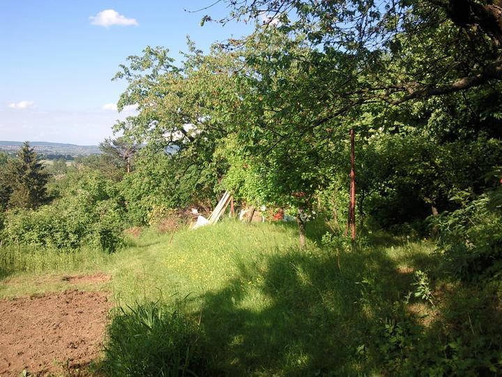Príbeh našej záhrady/chatky, príp. čo sa mi páči - Obrázok č. 22