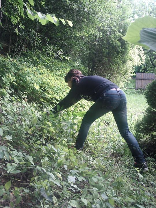 Príbeh našej záhrady/chatky, príp. čo sa mi páči - Obrázok č. 68