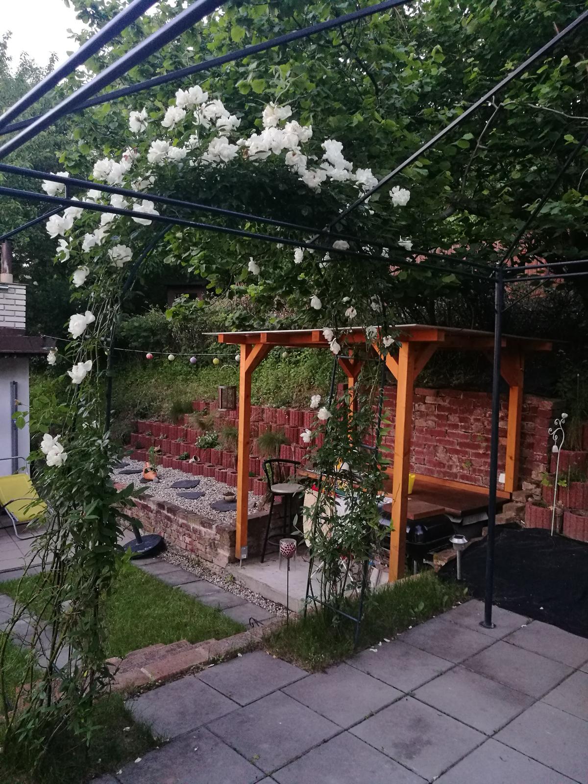 Príbeh našej záhrady/chatky, príp. čo sa mi páči - Oblúk v plnom kvete