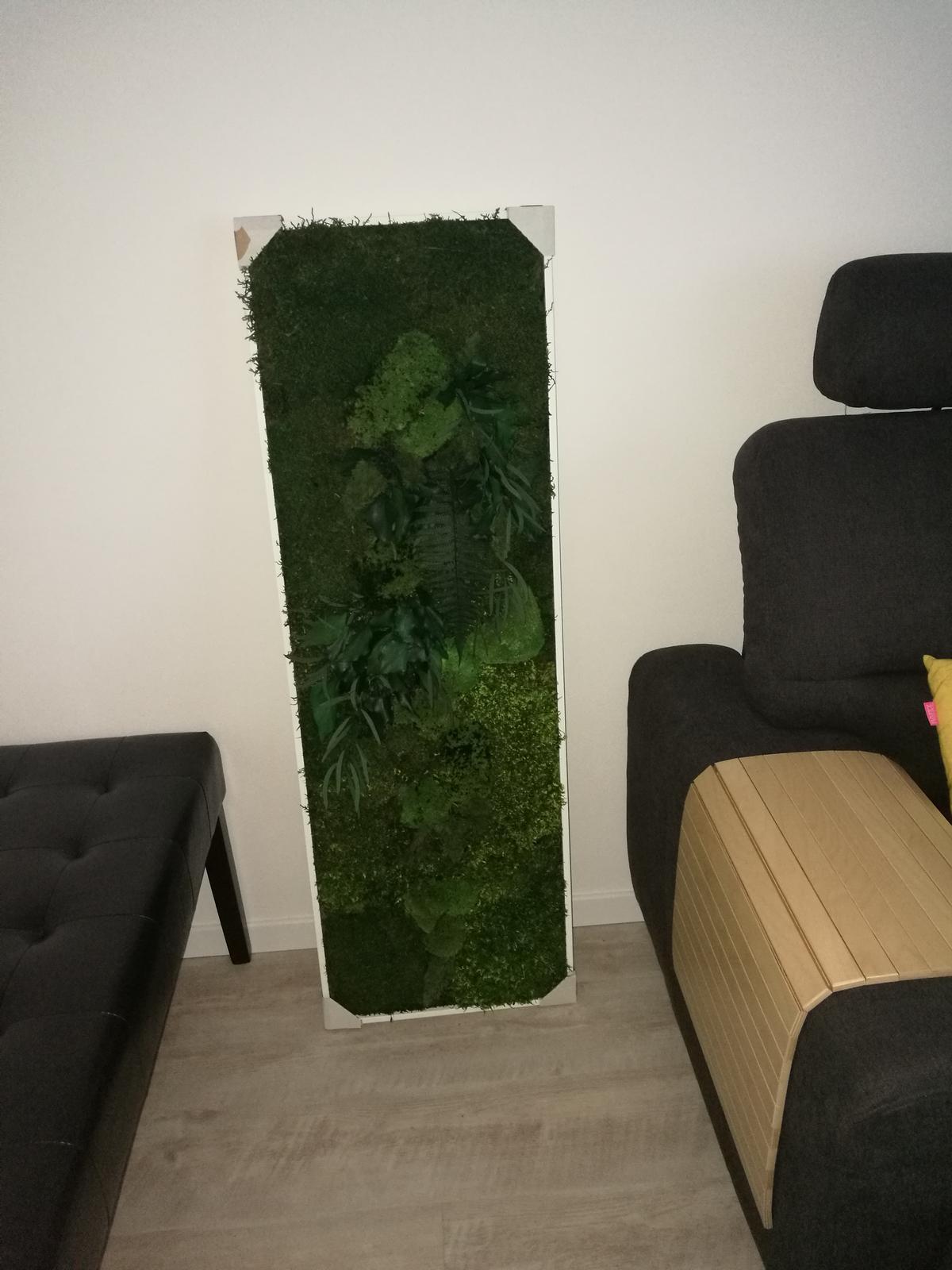 Náš, učupený pod lesom - tento zelený krásavec pôjde na stenu na schody