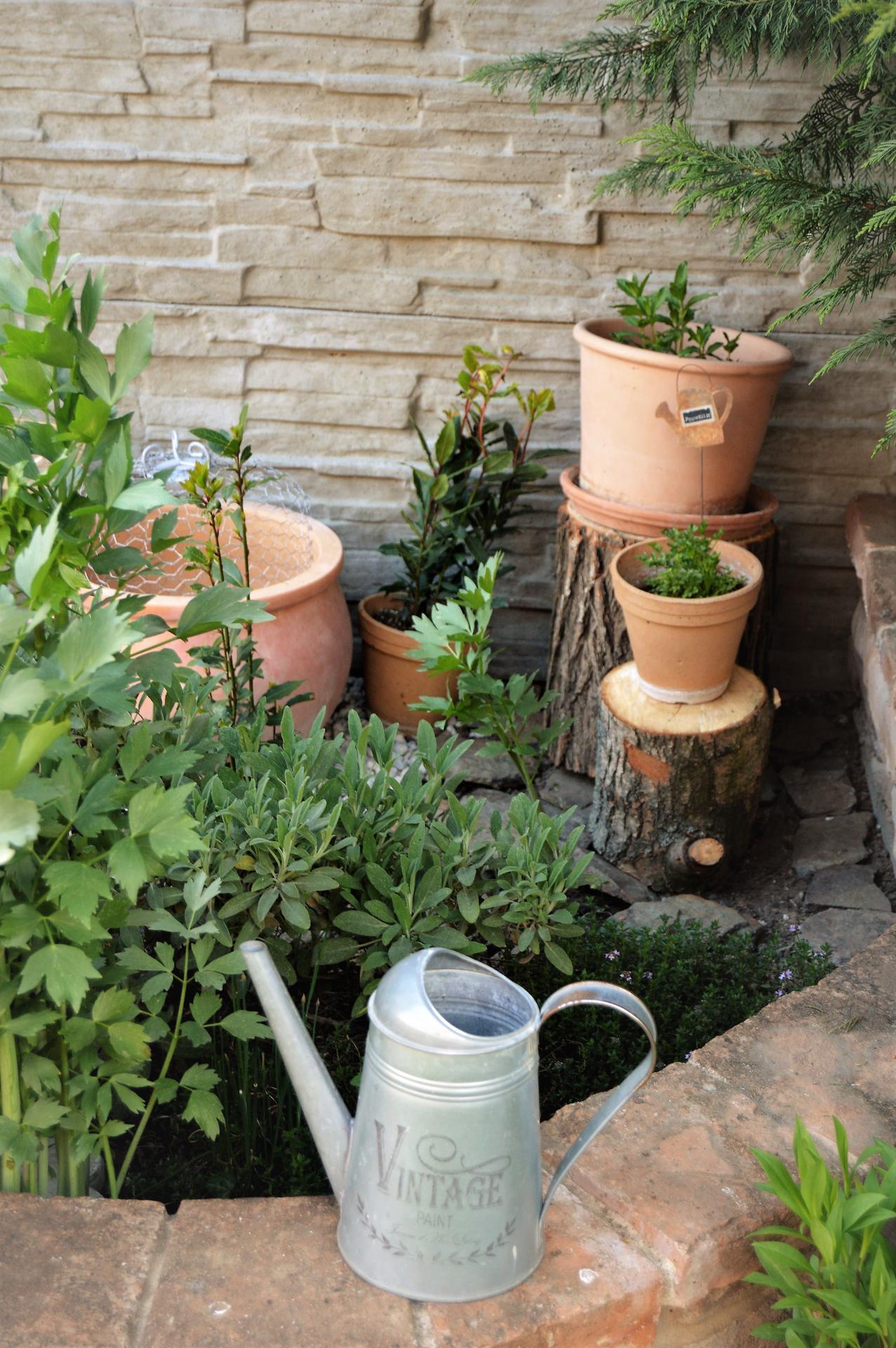 Terasa a záhrada 2020 - menšie a väčšie premeny - Obrázok č. 16