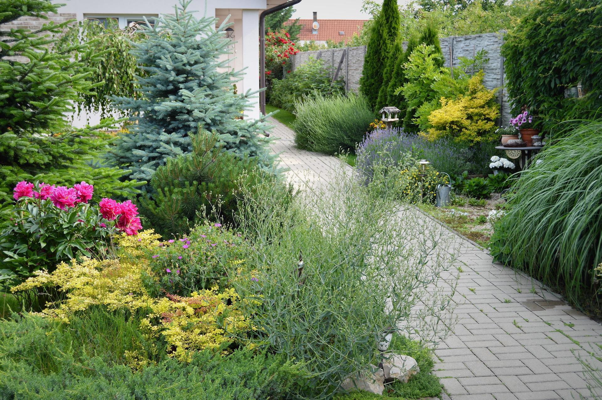 Terasa a záhrada 2020 - menšie a väčšie premeny - Obrázok č. 80