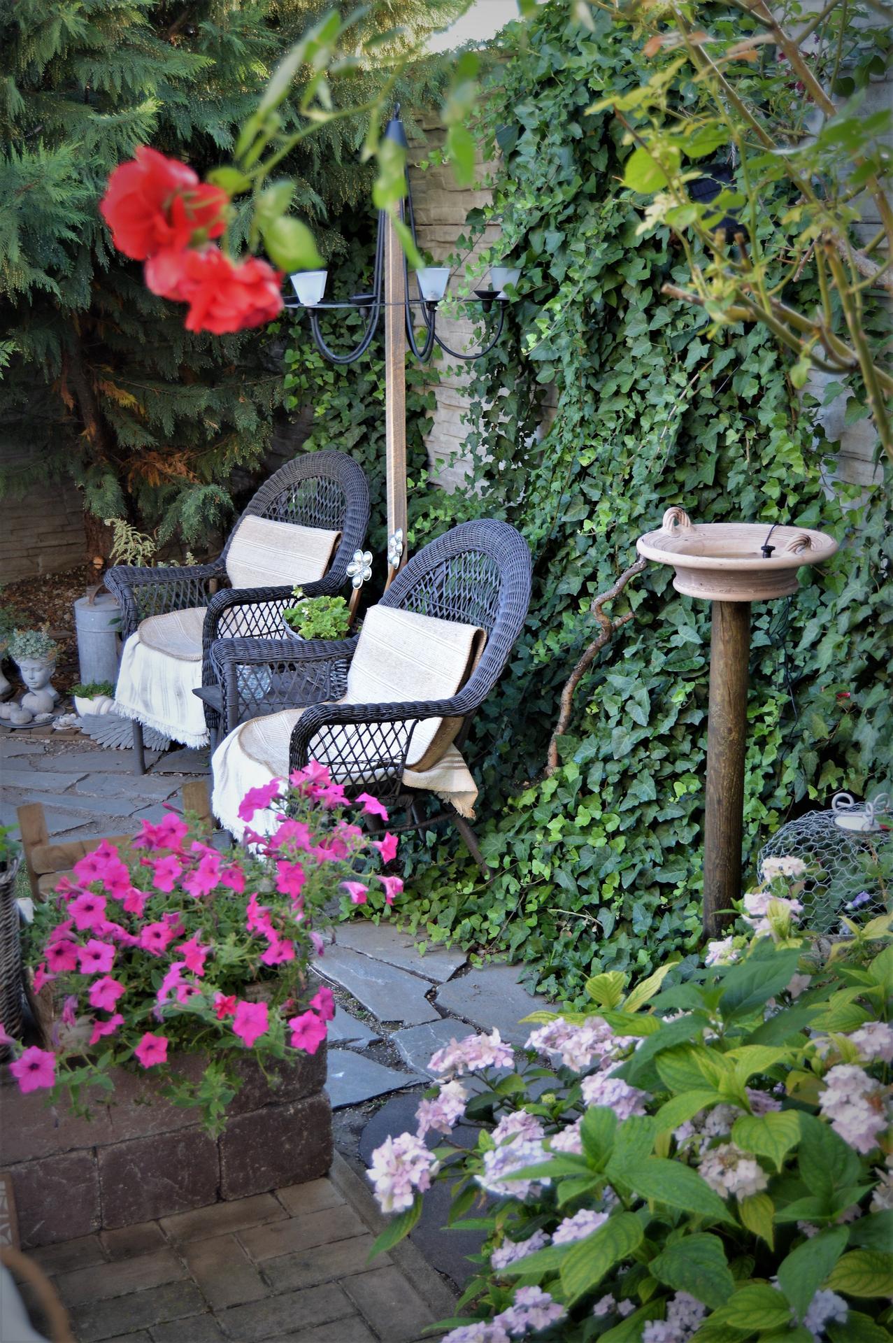Terasa a záhrada 2020 - menšie a väčšie premeny - Obrázok č. 93