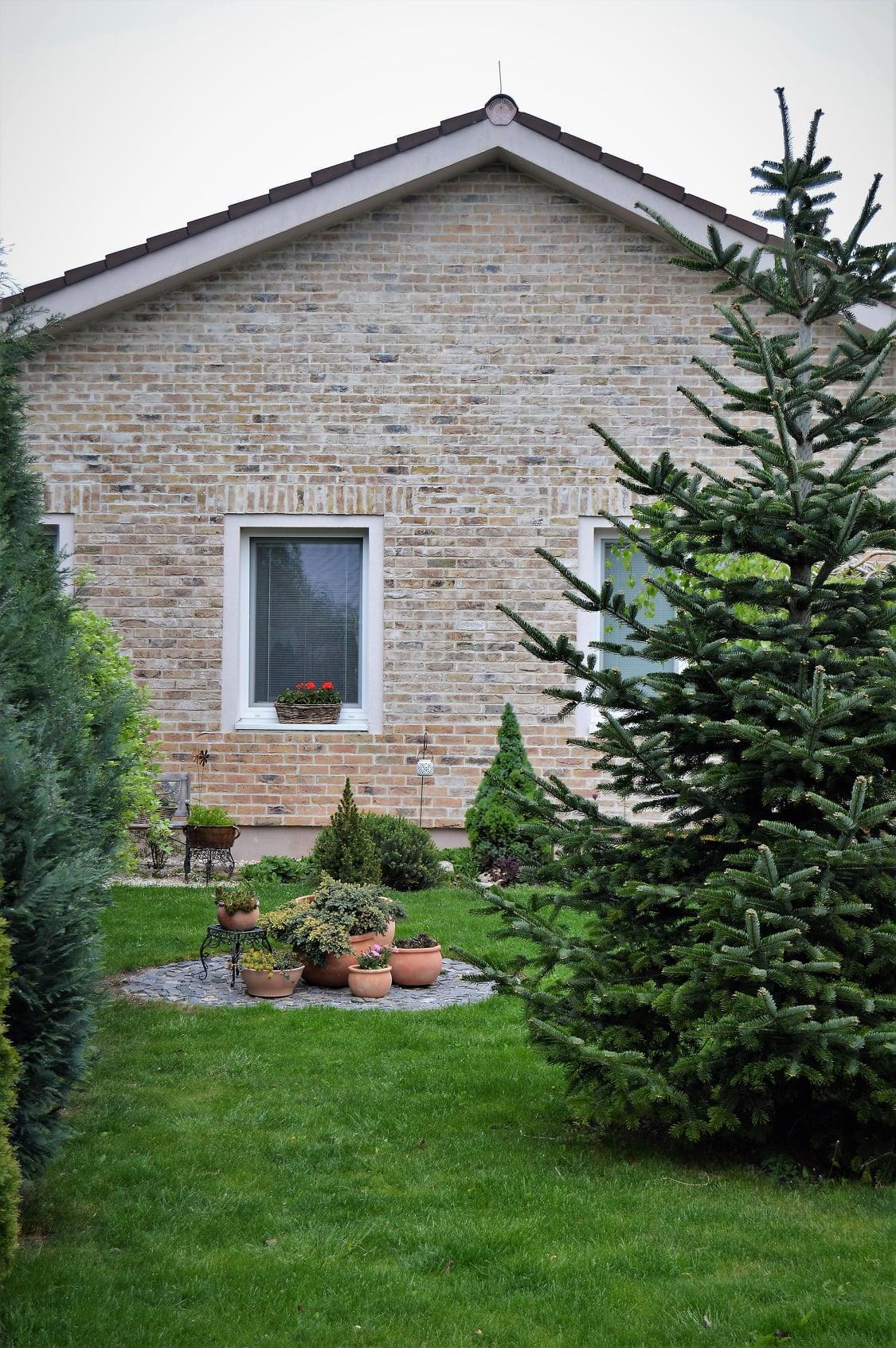 Záhrada a terasa 2021 - Obrázok č. 6