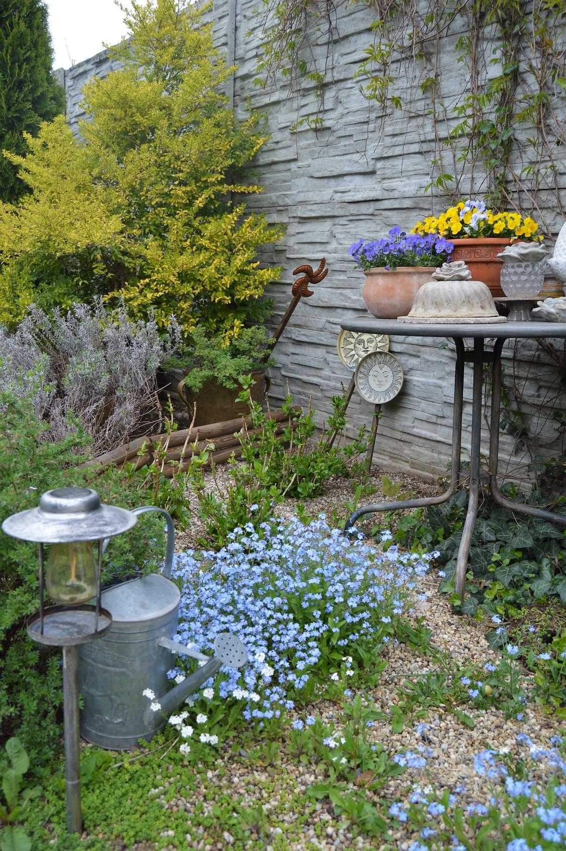 Záhrada a terasa 2021 - Obrázok č. 16