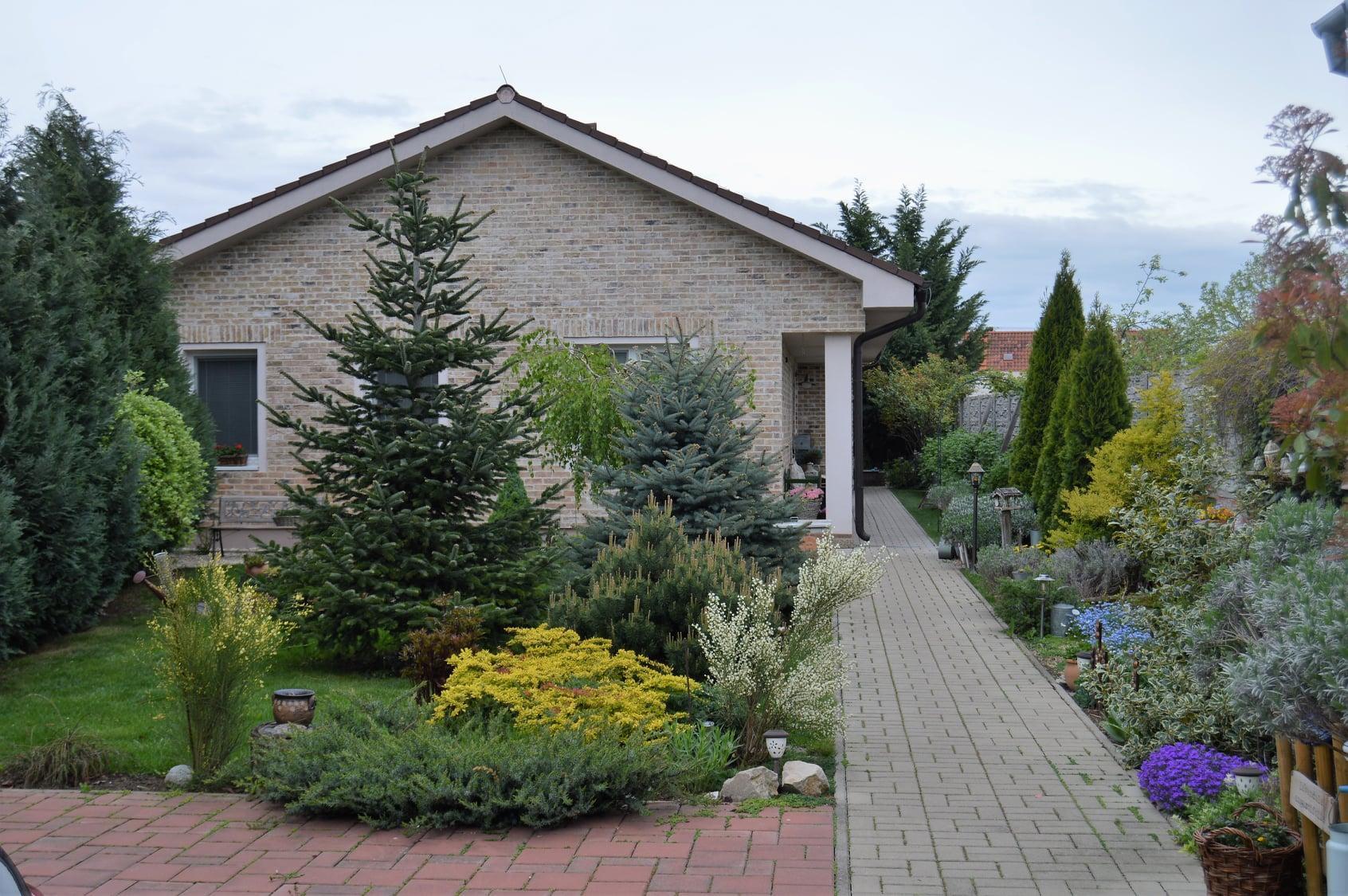 Záhrada a terasa 2021 - Obrázok č. 17