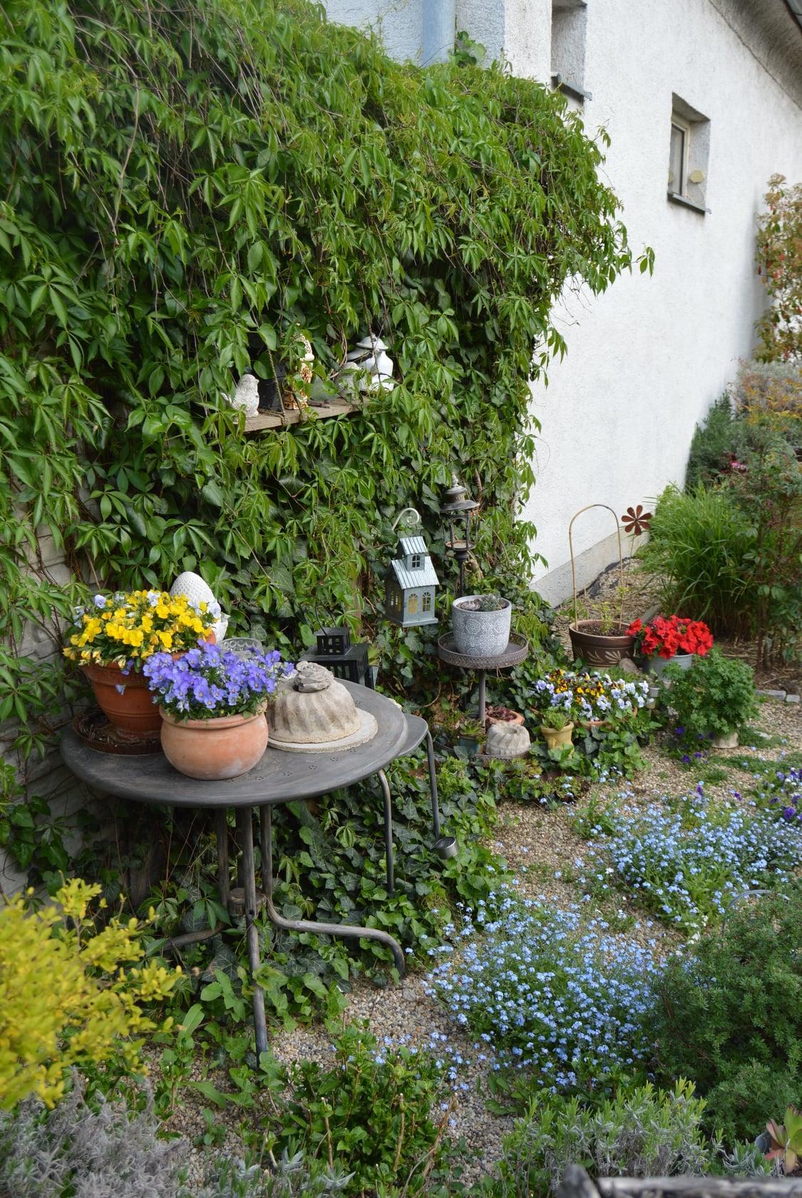 Záhrada a terasa 2021 - Obrázok č. 19