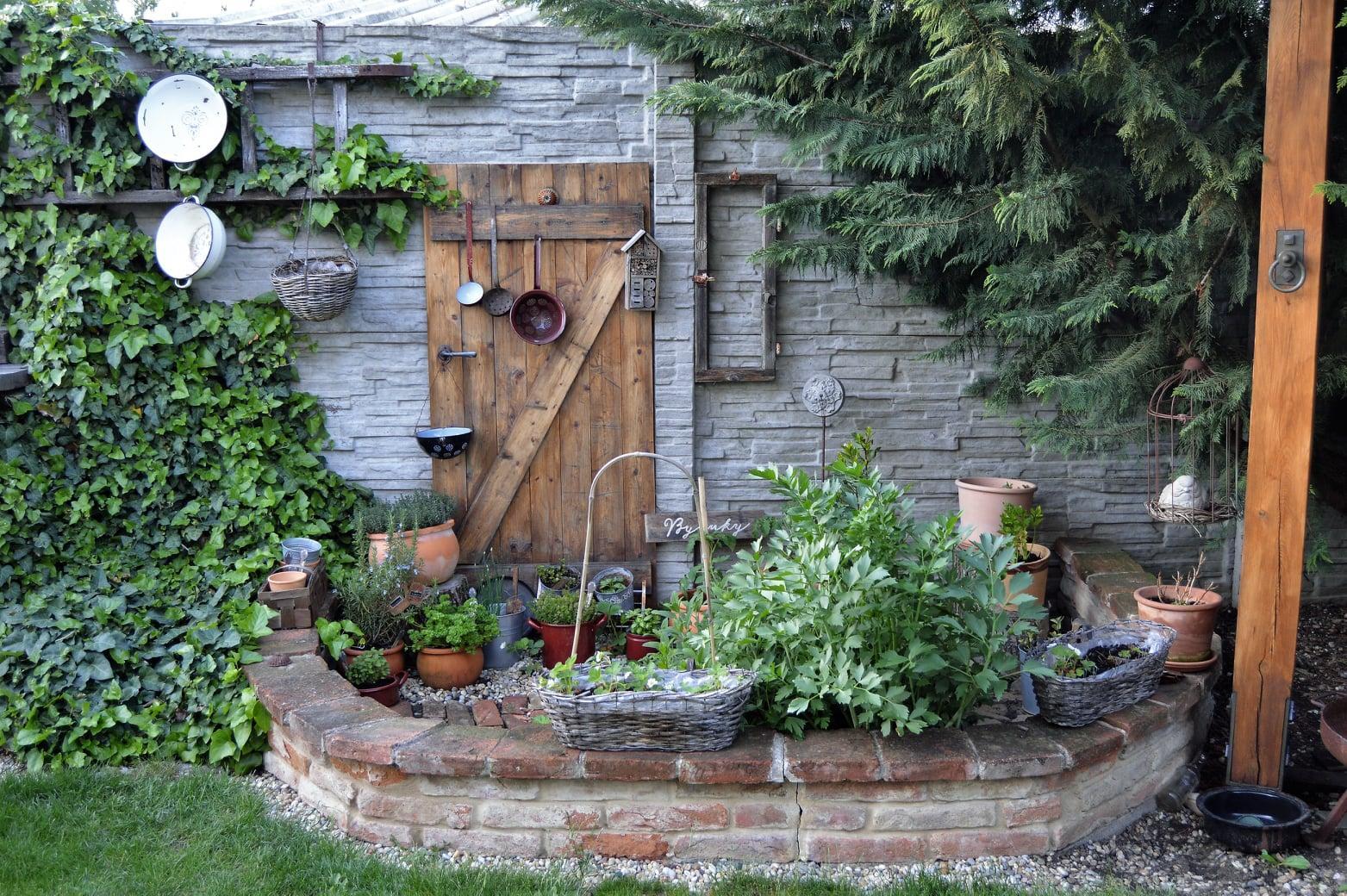 Záhrada a terasa 2021 - Obrázok č. 23