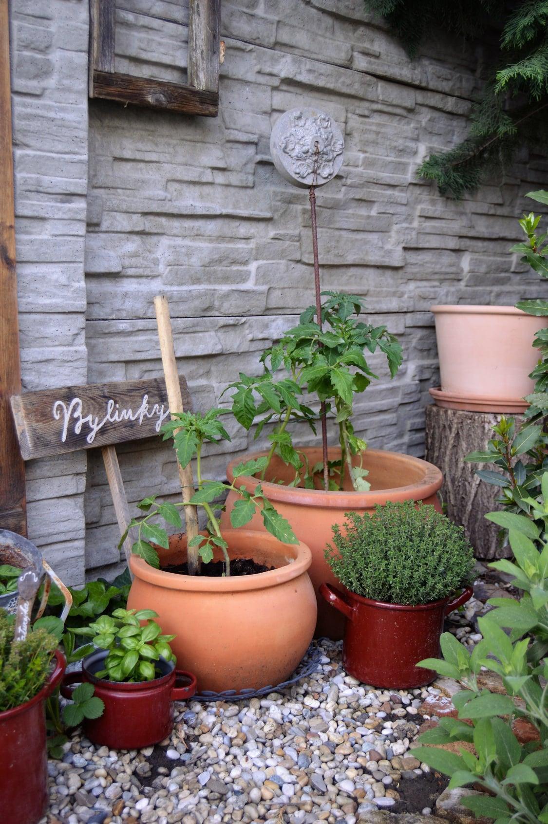 Záhrada a terasa 2021 - Obrázok č. 25