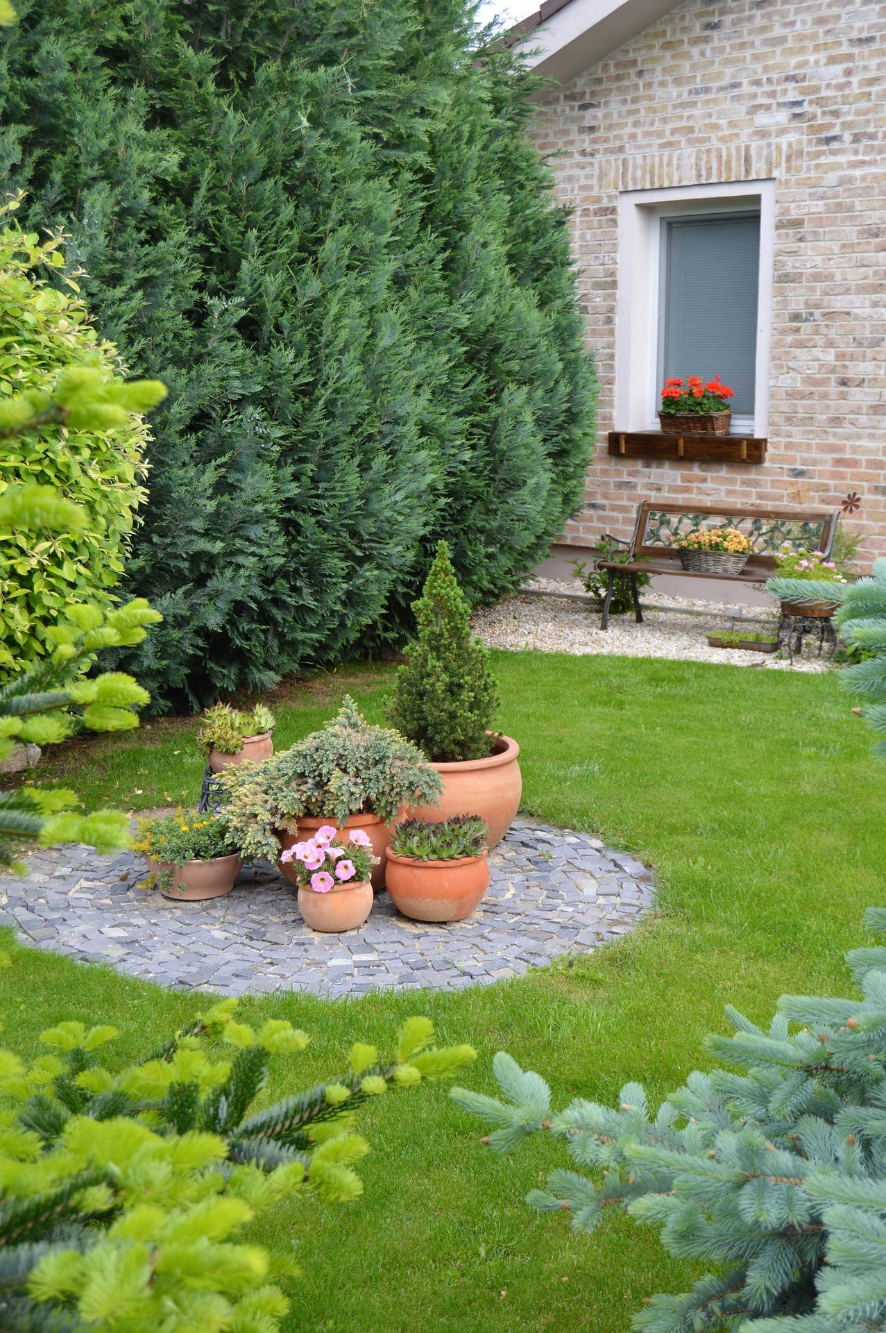Záhrada a terasa 2021 - Obrázok č. 35