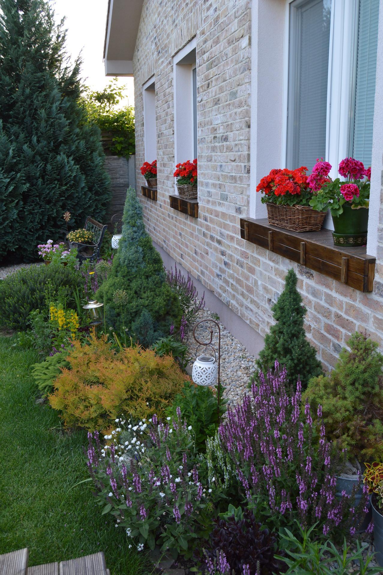 Záhrada a terasa 2021 - Obrázok č. 41
