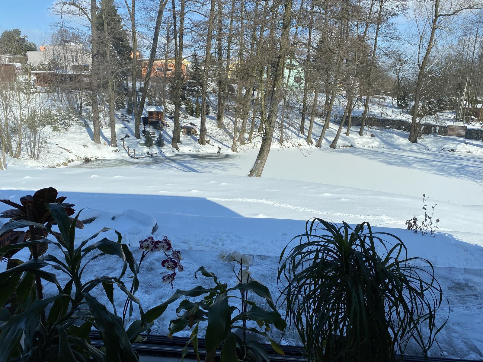 Zahrada u rybníčku - Ten výhled neomrzí ani v zimě 🖤
