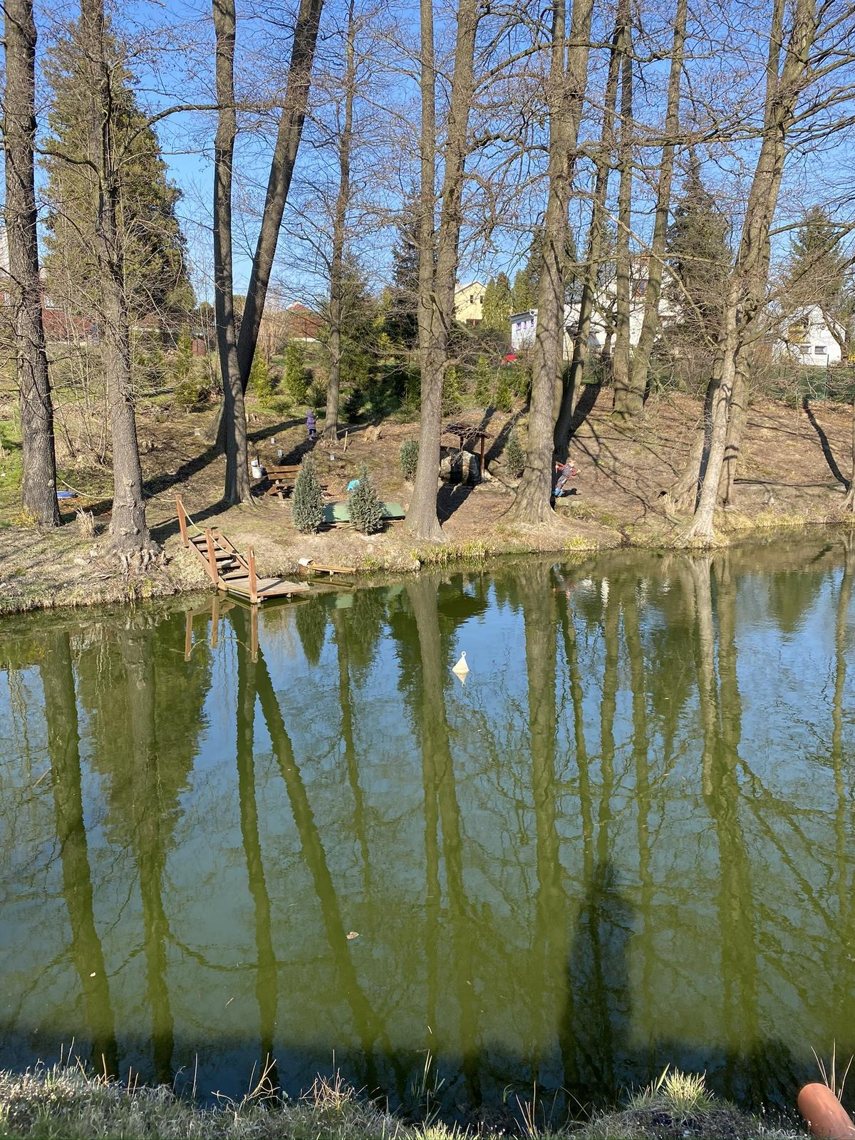 Zahrada u rybníčku - Obrázek č. 13