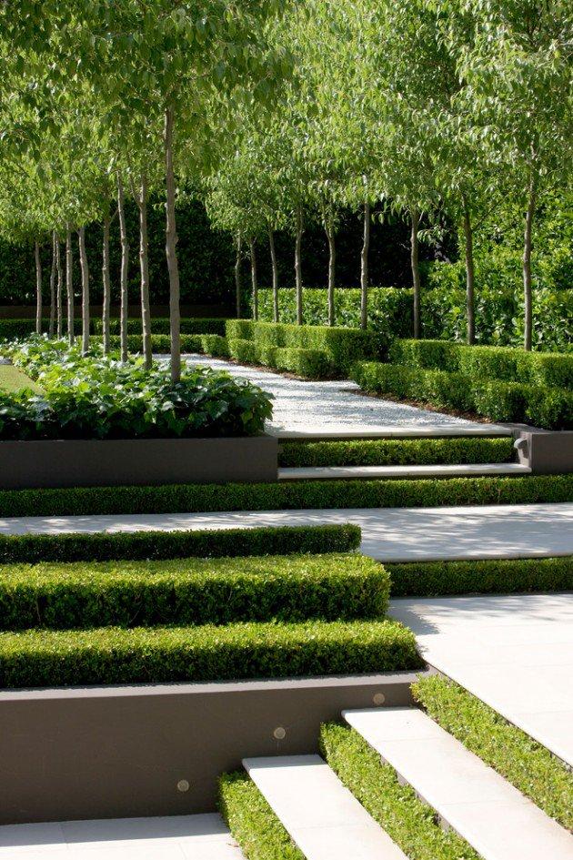 Záhrada... - Obrázok č. 1
