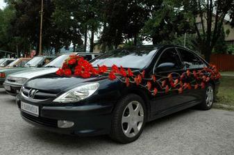 toto ano, len cervene auto a biele kvety