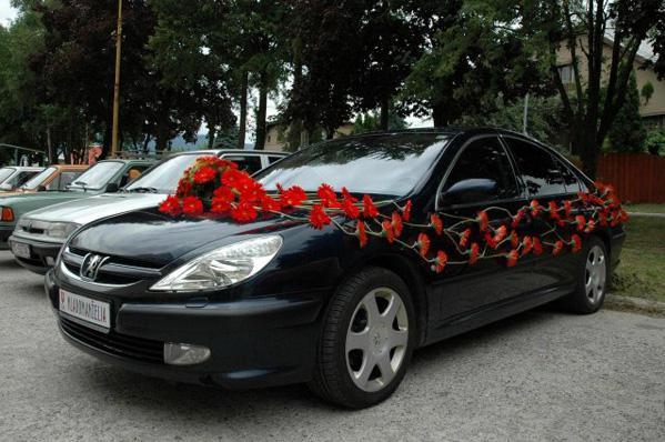Zeleno-biela - toto ano, len cervene auto a biele kvety