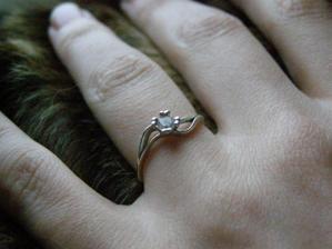 Tím to vše 18.10.2008 začalo - můj krásný zásnubáček :)