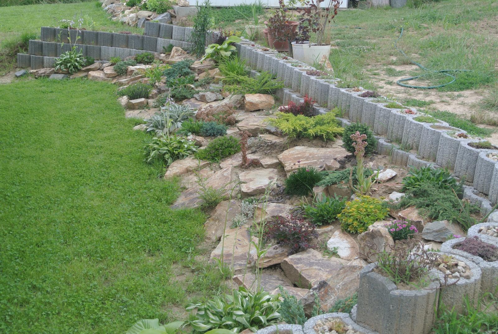 Budujeme okrasnú aj úžitkovú záhradu - 8.7.2020 Aktuálny stav záhona za domom.