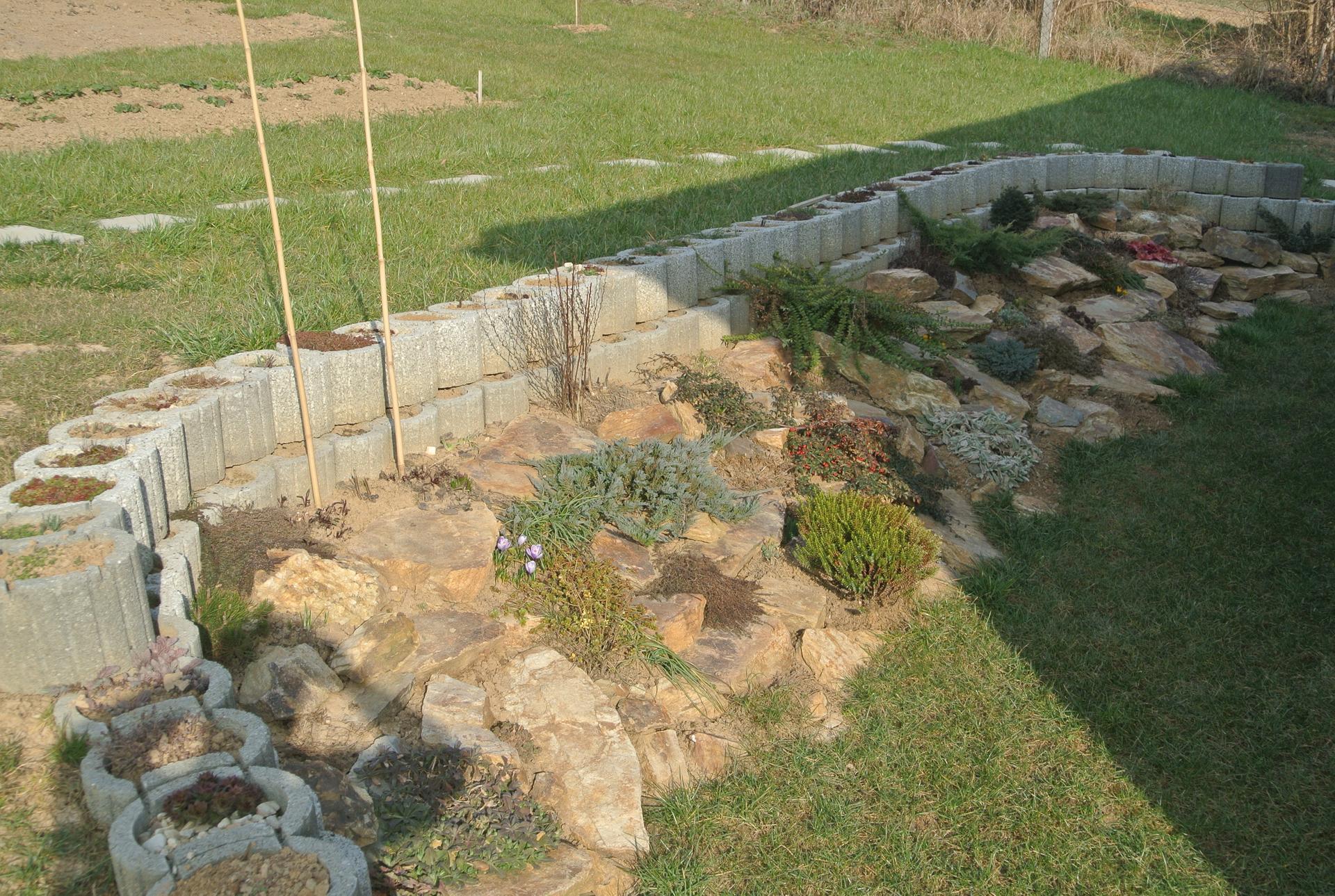 Budujeme okrasnú aj úžitkovú záhradu - 27.3.2021 Takto sme prezimovali.